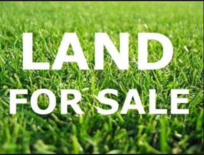 Harlem Residential Lots & Land For Sale: 00 Sawdust Road