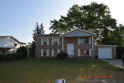 Hephzibah Single Family Home For Sale: 3426 Morgan Road