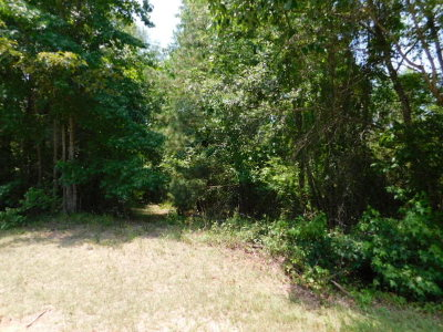 McDuffie County Residential Lots & Land For Sale: Ravenwood Drive