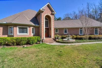 Aiken Single Family Home For Sale: 437 Woodlake Drive
