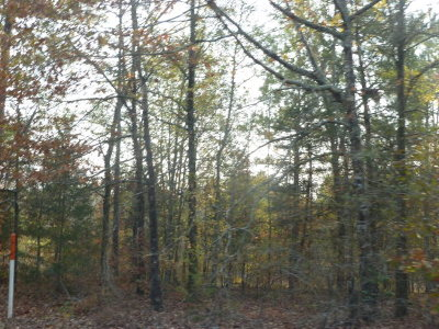 Lincolnton Residential Lots & Land For Sale: 2112 Loco Church Road