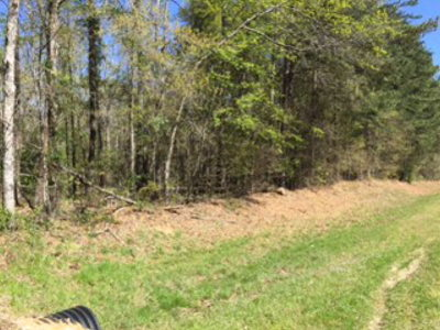 Harlem Residential Lots & Land For Sale: 0 Lot B Sawdust Road