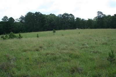 Lincolnton Residential Lots & Land For Sale: Lot A Bethany Church Road
