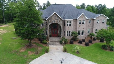 McDuffie County Single Family Home For Sale: 1082 Tanyard Creek Drive