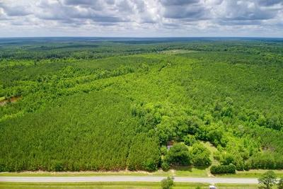 Residential Lots & Land For Sale: 889 Jewell Road