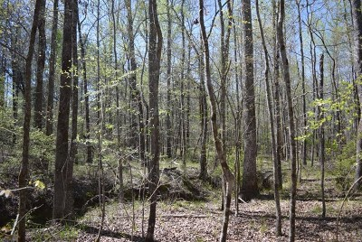 Appling Residential Lots & Land For Sale: 6375 B Happy Valley Lane