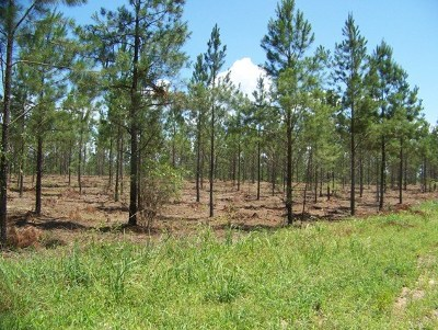 Appling Residential Lots & Land For Sale: 5261