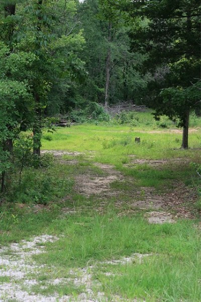 Grovetown Residential Lots & Land For Sale: 125 Pauline Street