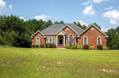 Grovetown Single Family Home For Sale: 350 Middleton Road