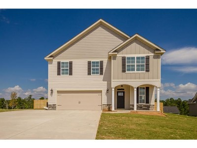 Grovetown Single Family Home For Sale: 933 Niagra Falls