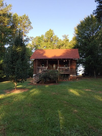 Lincolnton Single Family Home For Sale: 3869 Hephzibah Church Road