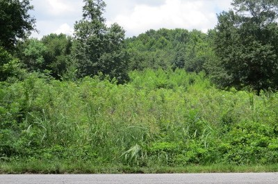Augusta Residential Lots & Land For Sale: 1815 Kissingbower Road