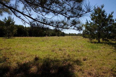 Columbia County Residential Lots & Land For Sale: 4145