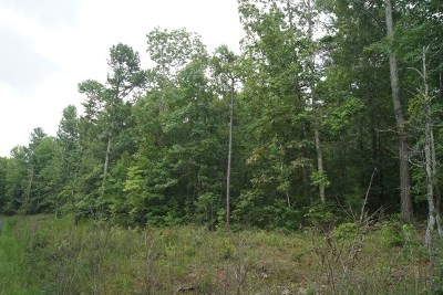 Lincolnton Residential Lots & Land For Sale: Lot 4 Lbk