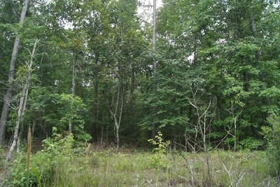 Lincolnton Residential Lots & Land For Sale: Lot 5 C Lbk