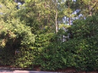Columbia County Residential Lots & Land For Sale: Miles Road