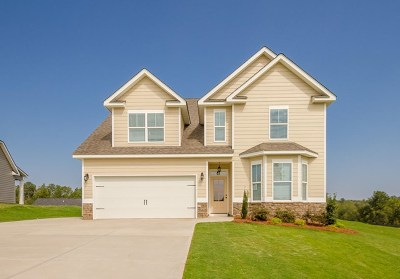 Grovetown Single Family Home For Sale: 937 Niagra Falls