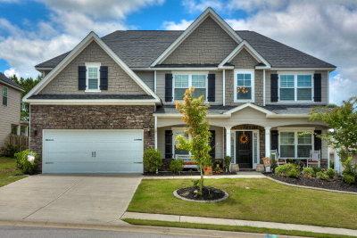 Grovetown Single Family Home For Sale: 848 Herrington Drive