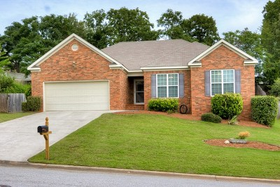 Grovetown Single Family Home For Sale: 234 Hot Springs Drive