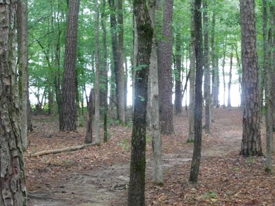 Lincolnton Residential Lots & Land For Sale: 00