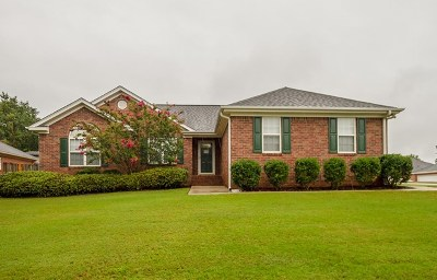 Grovetown Single Family Home For Sale: 518 Great Falls