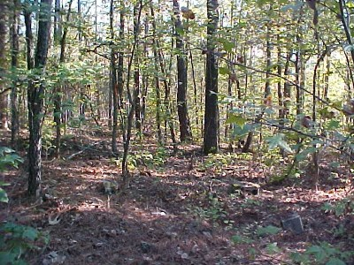 Lincoln County Residential Lots & Land For Sale: Lot 30 C Lbk Road