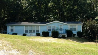 Columbia County Single Family Home For Sale: 7818 Forest Hills Drive