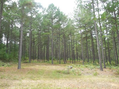Lincolnton Residential Lots & Land For Sale: Lot 113