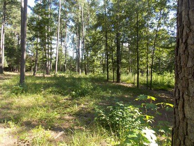 Residential Lots & Land For Sale: 2