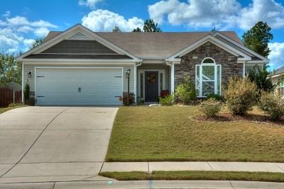 Grovetown Single Family Home For Sale: 514 Sebastian Drive