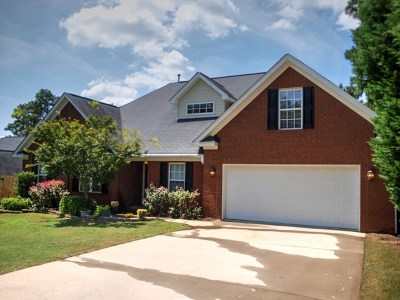 North Augusta Single Family Home For Sale: 190 Swallow Lake Drive