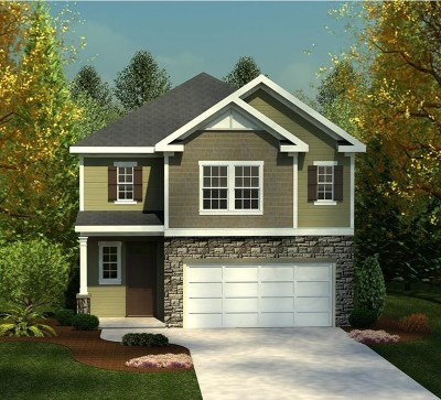 Grovetown Single Family Home For Sale: 117 Brighton Landing Drive