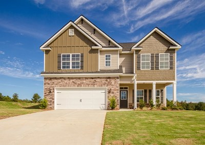 Grovetown Single Family Home For Sale: 943 Niagra Falls
