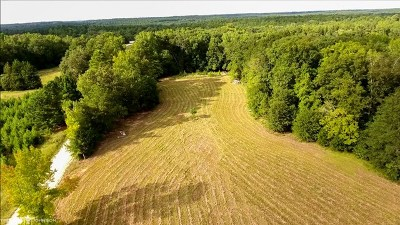 Lincolnton Residential Lots & Land For Sale: 1270 B Greenbriar Drive