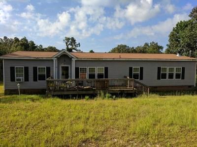 Hephzibah Single Family Home For Sale: 2474 Patiller Road
