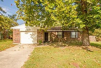 Augusta Single Family Home For Sale: 209 Pineview Drive
