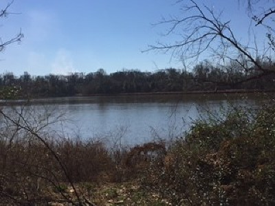 North Augusta Residential Lots & Land For Sale: 244 Altamaha Drive