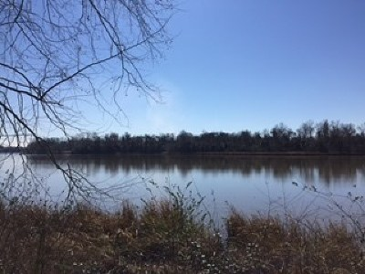 North Augusta Residential Lots & Land For Sale: 250 Altamaha Drive