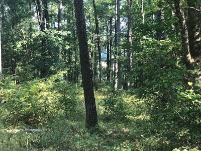 Lincolnton Residential Lots & Land For Sale: Lot 27 Plantation Point Circle