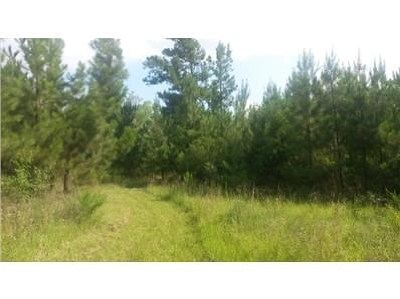 Appling Residential Lots & Land For Sale: 5179 N Tubman Road