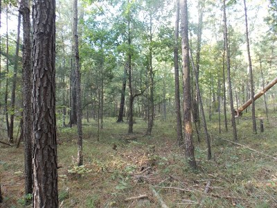 Lincolnton Residential Lots & Land For Sale: 9.95 Mount Zion Church Road