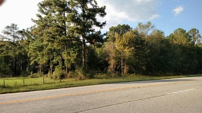 Lincoln County Residential Lots & Land For Sale: Lot 6 McCormick Hwy