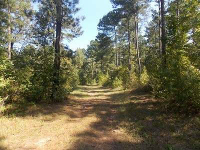 Lincoln County Residential Lots & Land For Sale: 33 White Rock Road