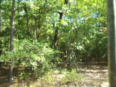 Lincoln County Residential Lots & Land For Sale: 40 Point Shores