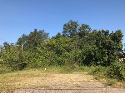 North Augusta Residential Lots & Land For Sale: 336 Edgefield Road