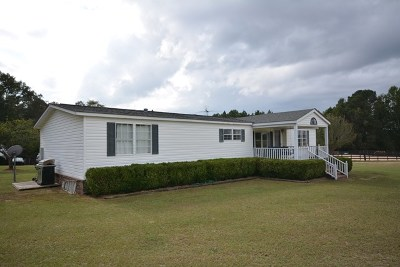McDuffie County Single Family Home For Sale: 2917 Wheless Drive