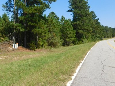 Lincolnton Residential Lots & Land For Sale: 3587 Chamberlain Ferry Road