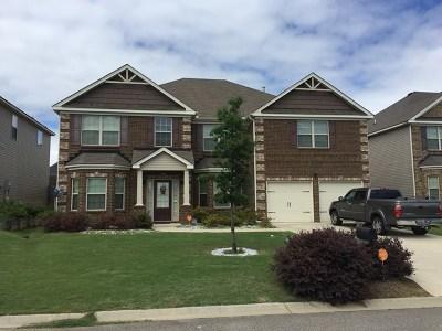 Aiken Single Family Home For Sale: 519 Telegraph Drive