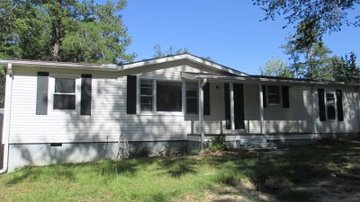 Grovetown Single Family Home For Sale: 103 Vfw Road