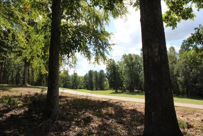 Residential Lots & Land For Sale: Lot A-36 Mount Vintage Plantation Drive